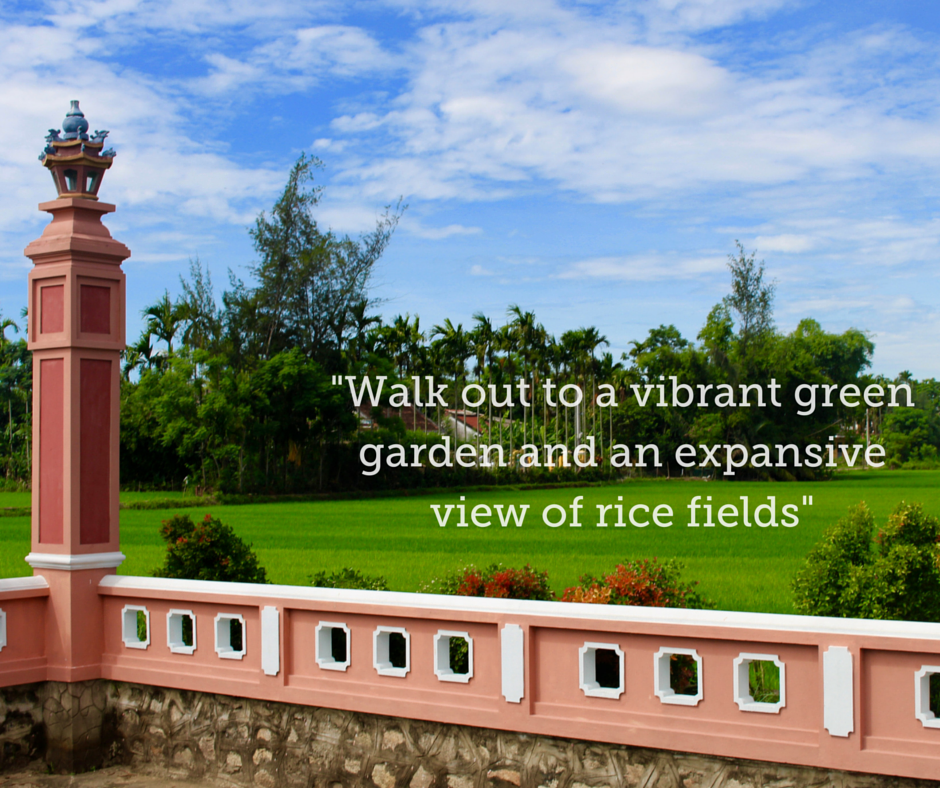 The Vibrant Green Rice Fields Seen on the Hoi An Day Tour.