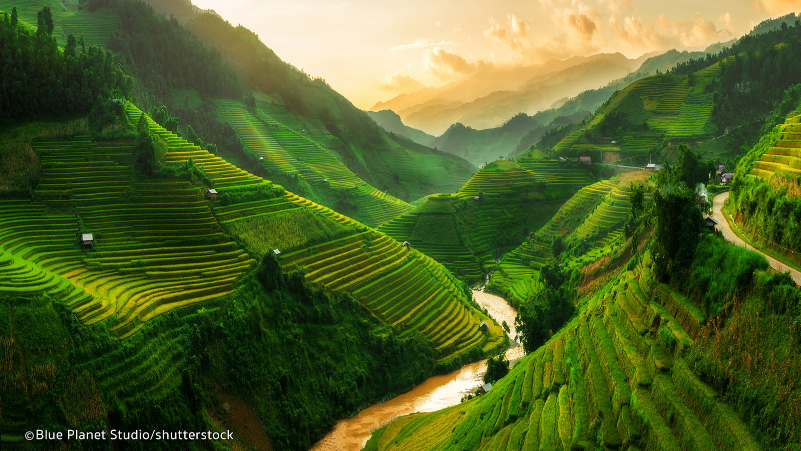 The tiered rice terraces in Sapa