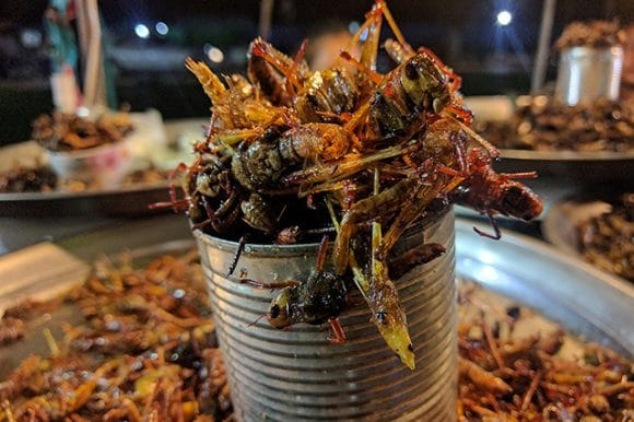 Siem Reap After Dark Foodie Bike Tour