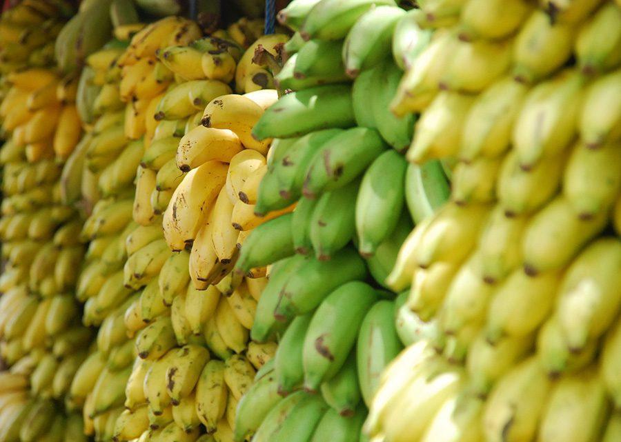 Healthy food in Vietnam