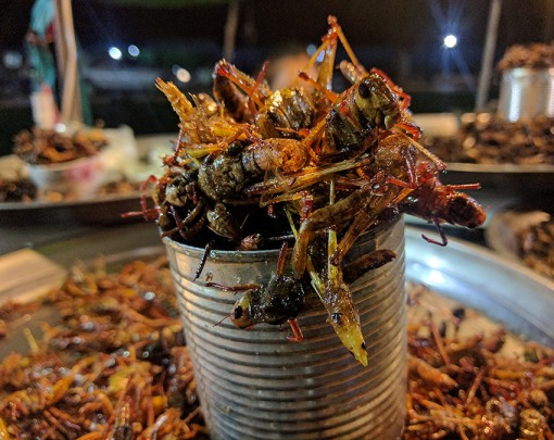 Siem Reap After Dark Foodie Tour